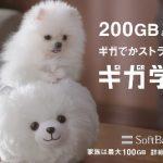 ソフトバンクCM・200ギガあげちゃうちゃう犬!でかストラップ