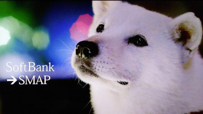 白戸家 お父さん犬 白い犬 ソフトバンク