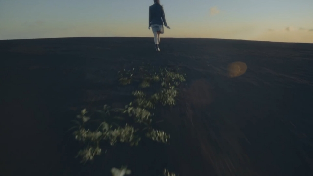 大地 植物 女子高生 地平線